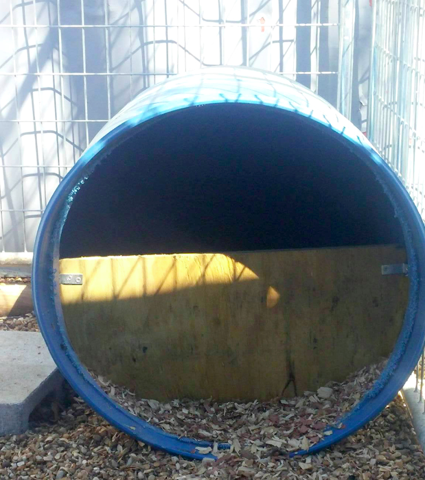 Why Do We Use Blue Barrels Instead of Expensive Dog Houses?