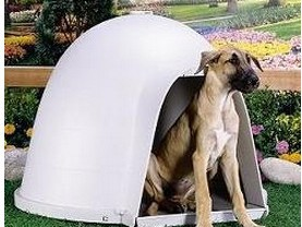 Notice On The Commercial Plastic Dog Houses That Front Lip Is Very Low Any Shavings Or Bedding Would Be Inside Those Come Out Easily As